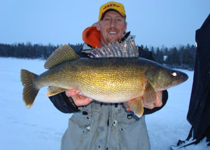 walleye ice fishing guide